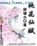 桃花仙赋封面