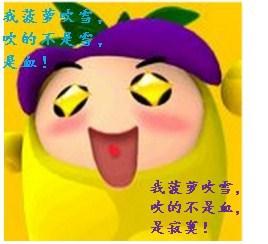 (综武侠同人)菠萝要吹雪!