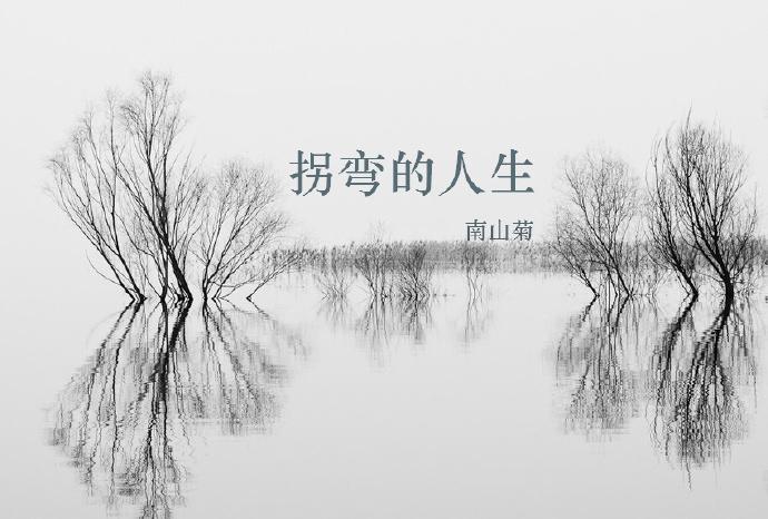 (综电视剧同人)拐弯的人生